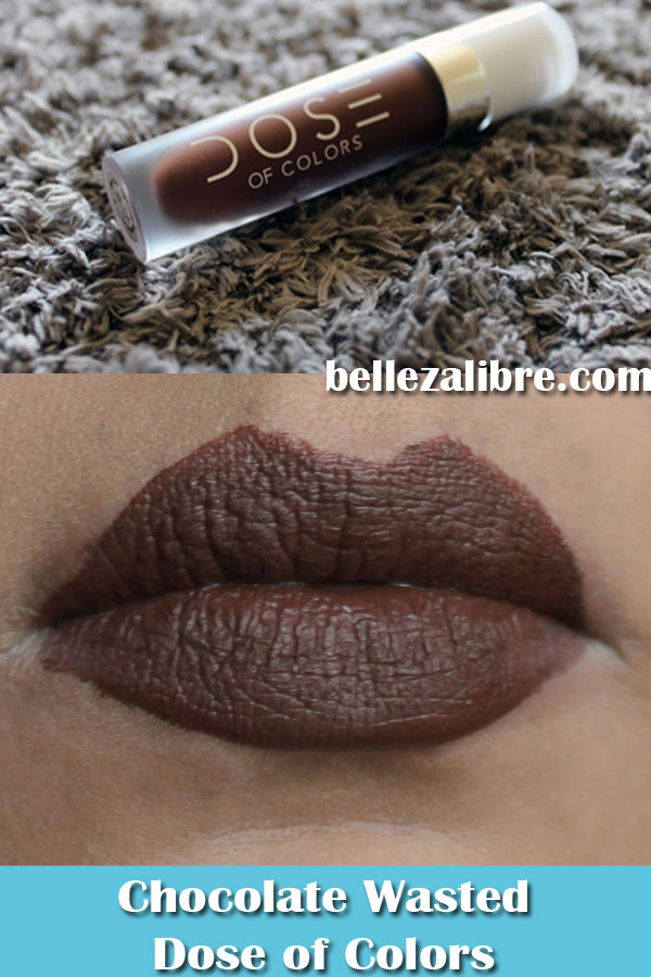 Pin Lip Swatch Chocolate Wasted