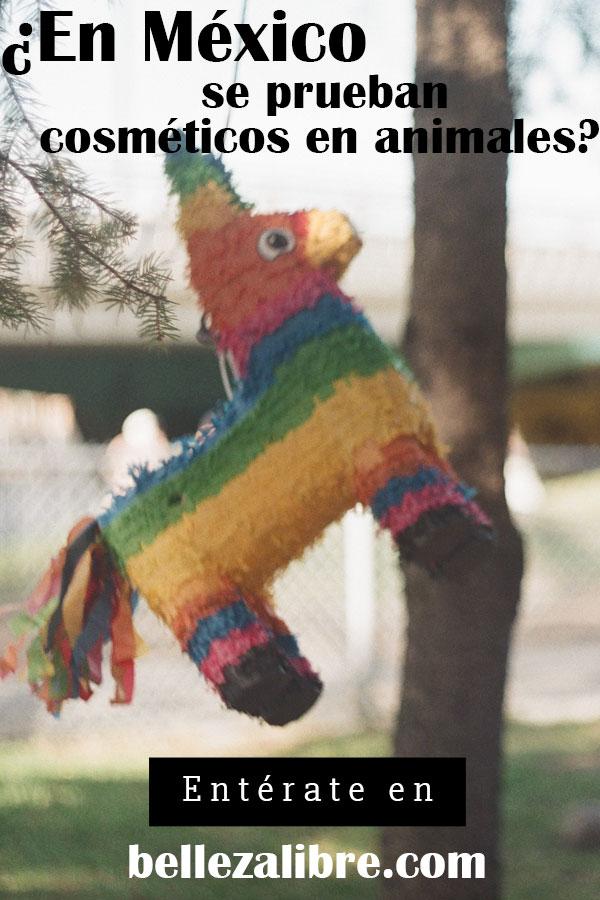 ¿En México se prueban cosméticos en animales?