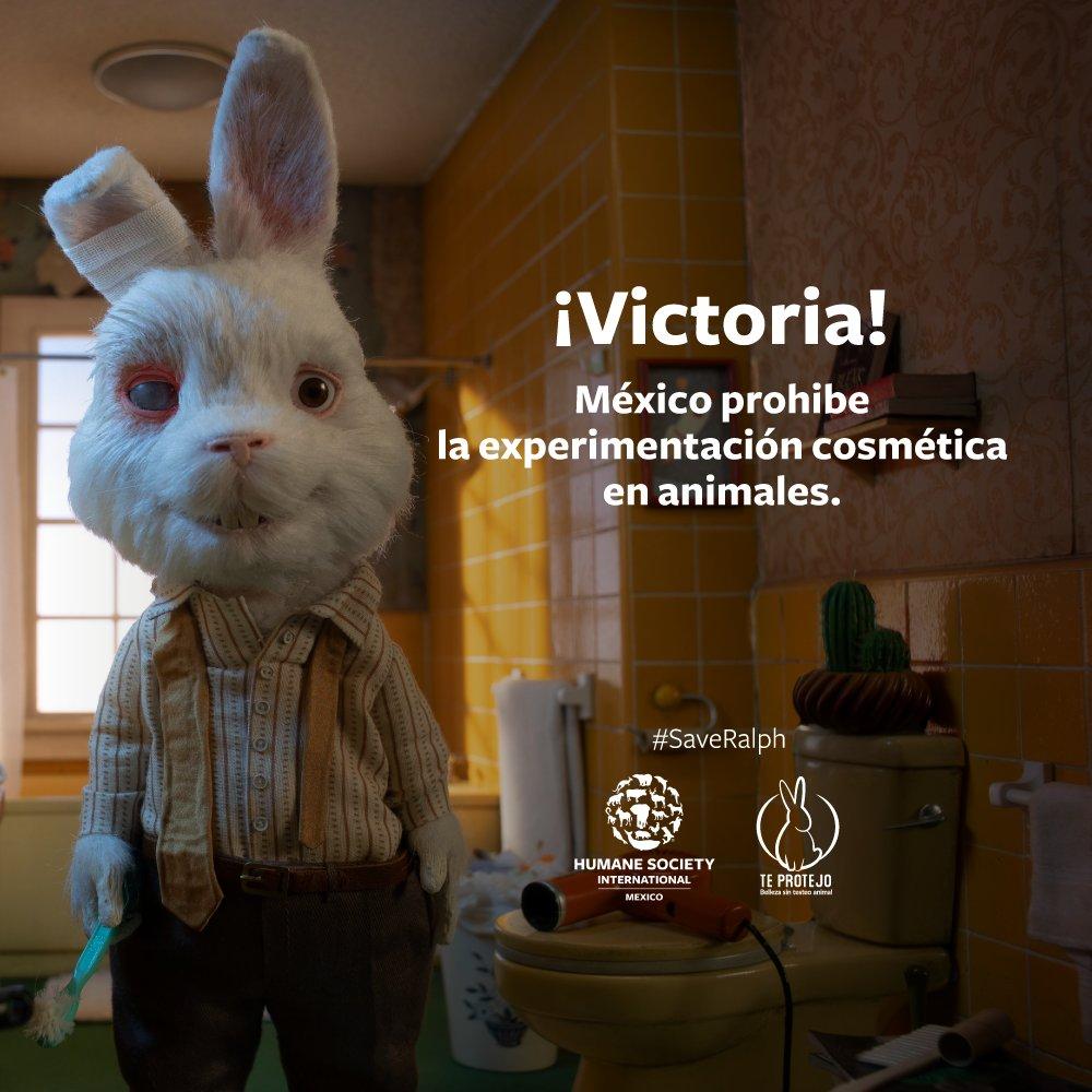 Victoria, México es libre de crueldad
